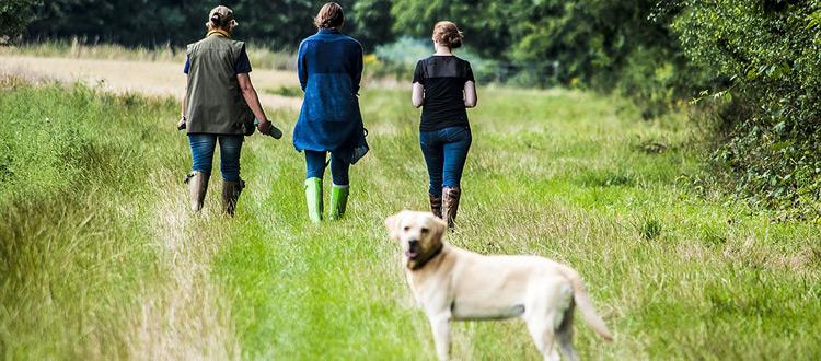 Wandern mit Hund: neuer Treckingurlaub – von der Wanderey