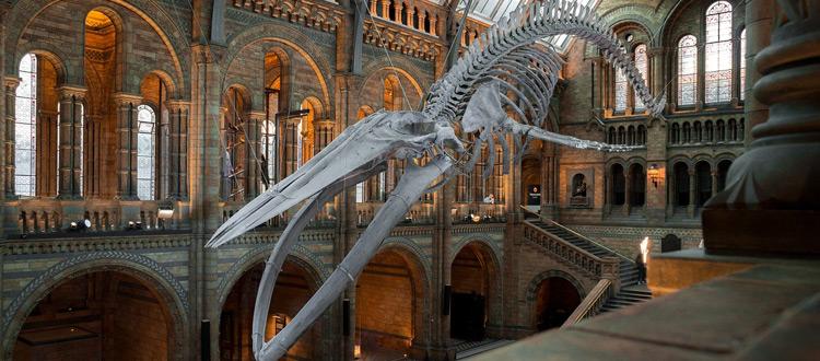 Museum 2.0 – anfassen, mitmachen, erleben – ARAG Tipp zum Wochenende: Museen der anderen Art besuchen
